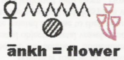 Determinative - three flowers hieroglyph:  ANKH, meaning 'flower' in Egyptian